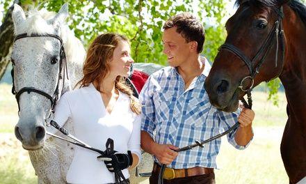 Le Haras de Bois Soleil à Méounes : Cours d'équitation au choix: #MÉOUNES 12.90€ au lieu de 25.00€ (48% de réduction)