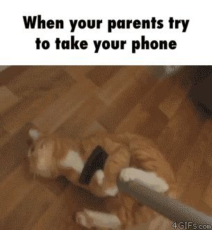 When your parents try to take your phone GIF