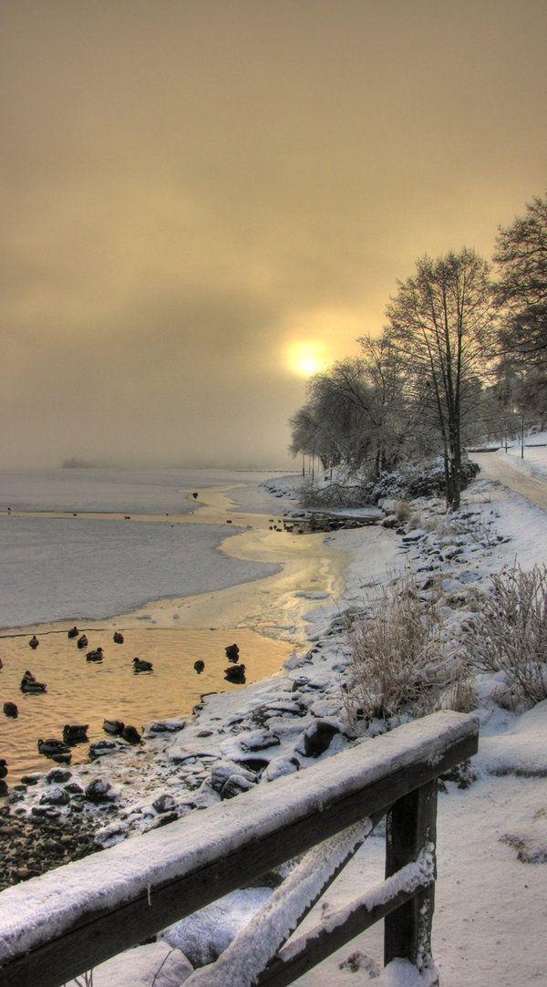 0mnis-e:  Edsviken lake By TheAngryAngel