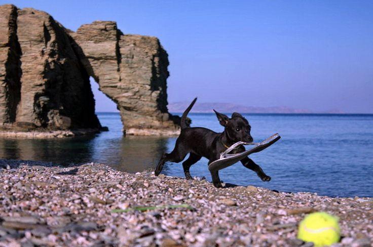 Psaromoura beach in Agia Pelagia, Heraklion Crete.