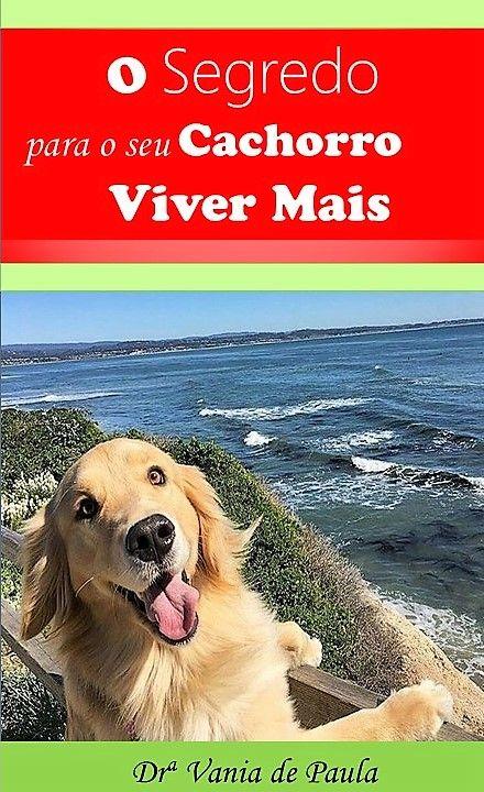 10 best our favourite fictional dogs images on pinterest dog escrevi este ebook falando o quanto importante voc se sentir bem para seu amigo fandeluxe Image collections