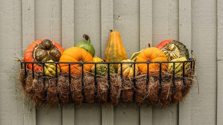 gourds-204929_1920