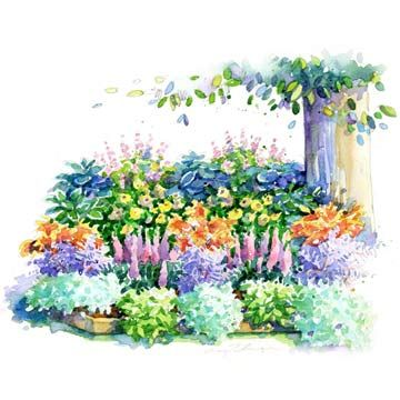 No-Fuss Shade Garden Plan -- Astilbe, Barrenwort, Bleeding Heart, Foamy Bells, Hellebore, Hosta, Japanese Painted Fern, Lamium...