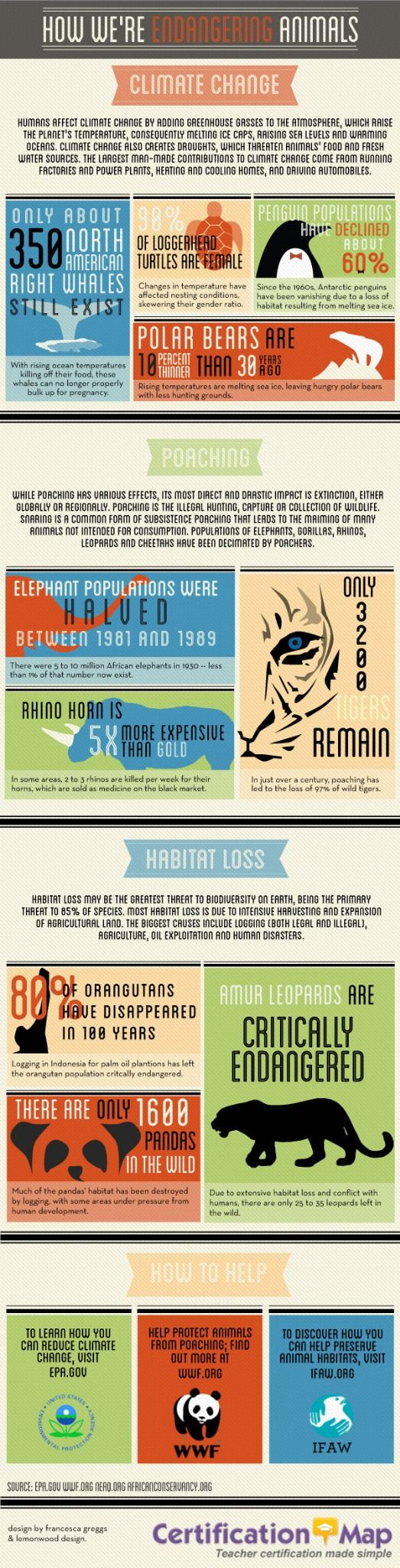 Infographic - how climate change is endangering animals.
