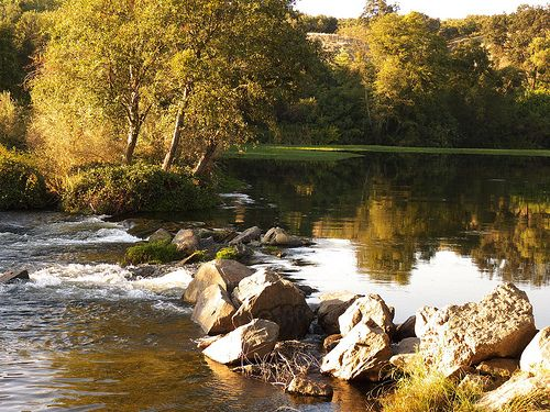 17 best images about black spots on pinterest the road for Millerton lake fishing