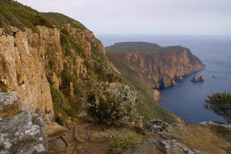 Panoramio - Photo of Cape Roul Tasmania