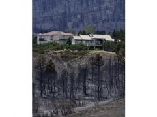 10:35 a.m.  Jerry Forte, Colorado Springs Utilities CEO, says no more than 10 homes not destroyed...Colorado Spring