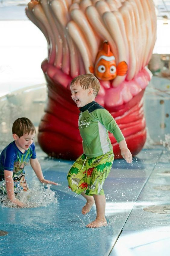Nemo's Reef, a whimsical water play area located aboard the Disney Fantasy, is a fun-filled splash deck for young ones featuring pop jets, bubblers and fountains—starring characters from the hit Disney•Pixar film, Finding Nemo.