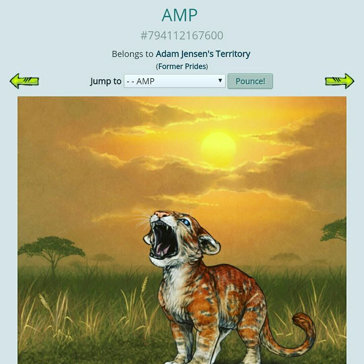 I CRBed two lionesses and they gave birth to two cubs each. The result was this pretty AMP, so I just have to wait till she is an adult to see what mutation she has. Yay :) I've got another CRB lioness giving birth tonight.