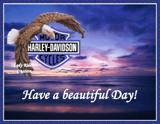 144 best images about Harley Greetings on Pinterest ...