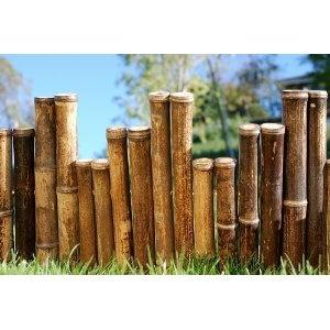 Bamboo Border edging