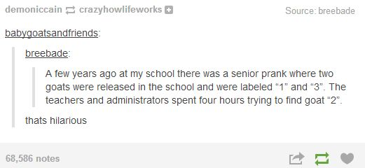 I just read this to my brother who graduated high school this year and he said that he wished they had done this