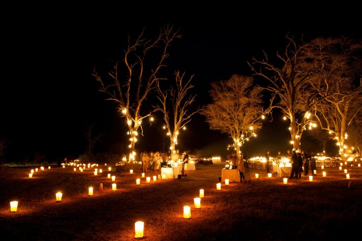Lighting inspiration for bush dinner and lead up to lodge for reception - Ryan Graham Photography