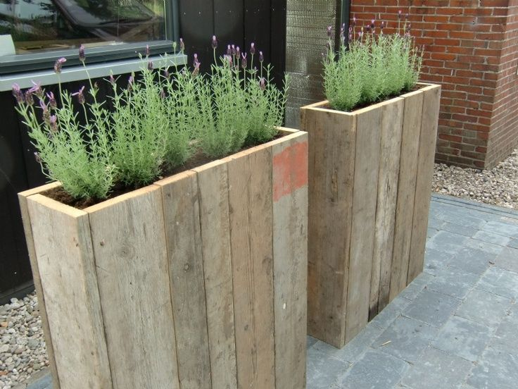 Best 25 patio wall ideas on pinterest privacy walls for Tall planters for privacy
