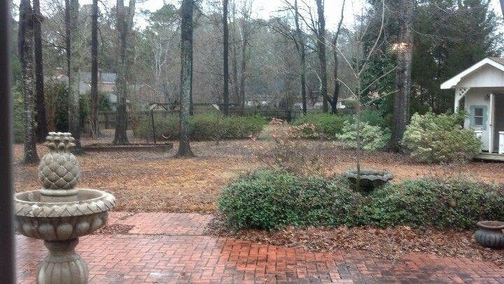 Backyard.  Will tear down house, not safe.