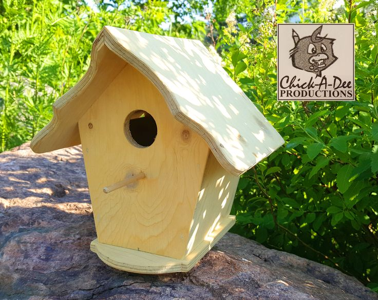 Folk Art Birdhouse:  Beauty is in the eye of the beholder, but... ...Beholders with good taste will click me ;)