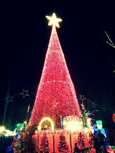 Santa enchanted forest in Miami❤