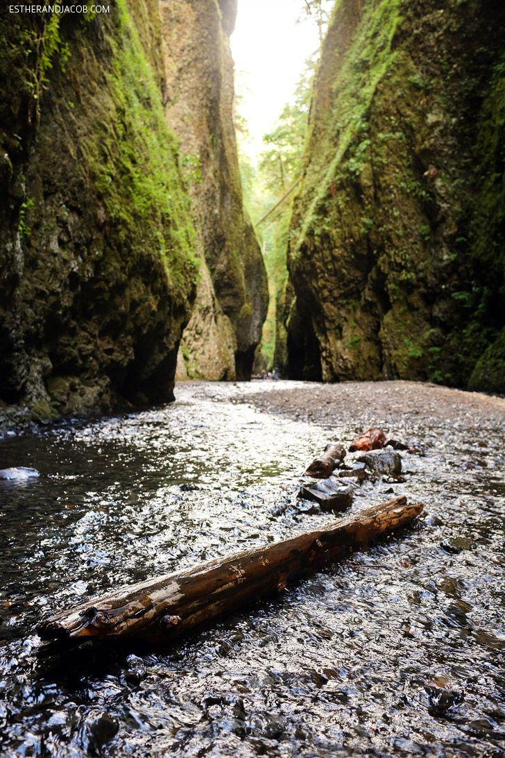The Oneonta Gorge Hike near Portland Oregon.