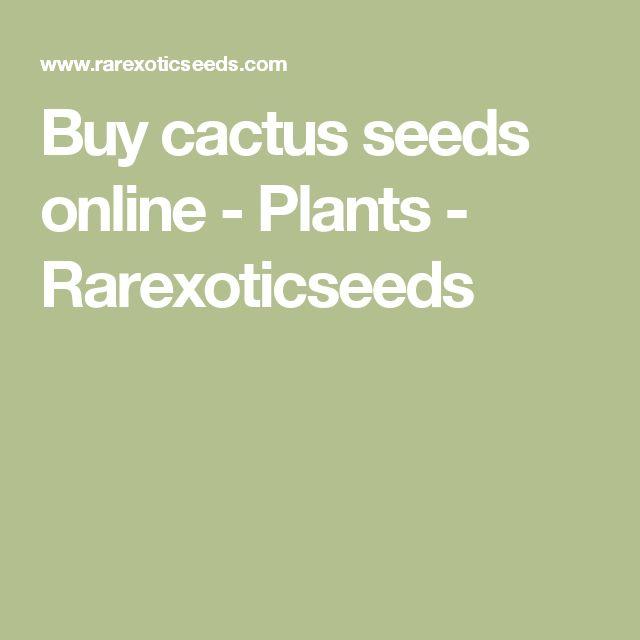 Buy cactus seeds online - Plants - Rarexoticseeds