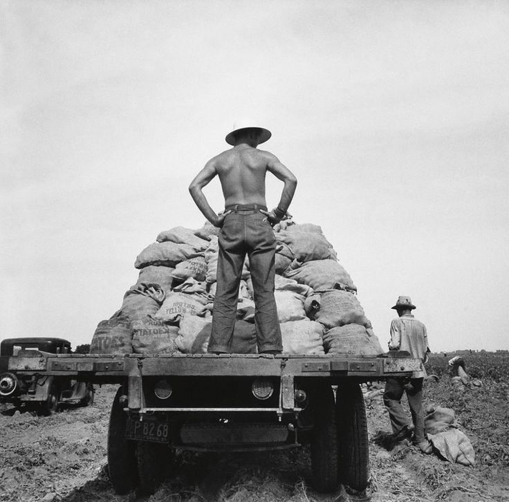 Dorothea Lange (1895-1965) Potato truck in the field near Shafter, California 1937
