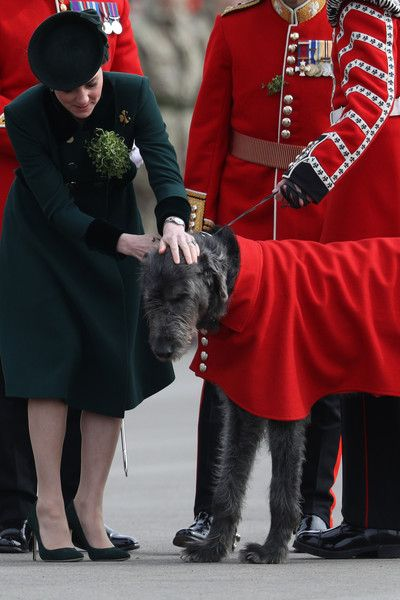 Kate Middleton Photos Photos - Catherine, Duchess of Cambridge presents a shamrock to The Regimental mascot Irish Hound as the 1st Battalion Irish Guardsmen look on during the annual Irish Guards' St Patrick's Day Parade at Household Cavalry Barracks on March 17, 2017 in London, England. - The Duke And Duchess Of Cambridge Attend The Irish Guards St Patrick's Day Parade