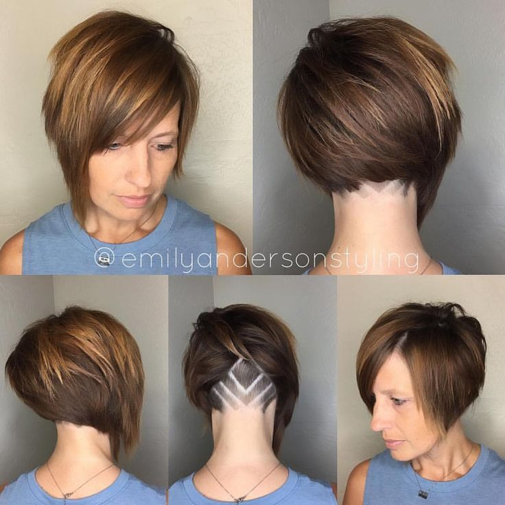 See this Instagram photo by @shorthair_love • 692 likes