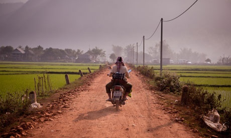 Rice fields in Hao Binh province, Vietnam #ridecolorfully
