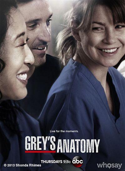 regarder Grey's Anatomy saison 10 sur http://serievf.net/greys-anatomy-saison-10