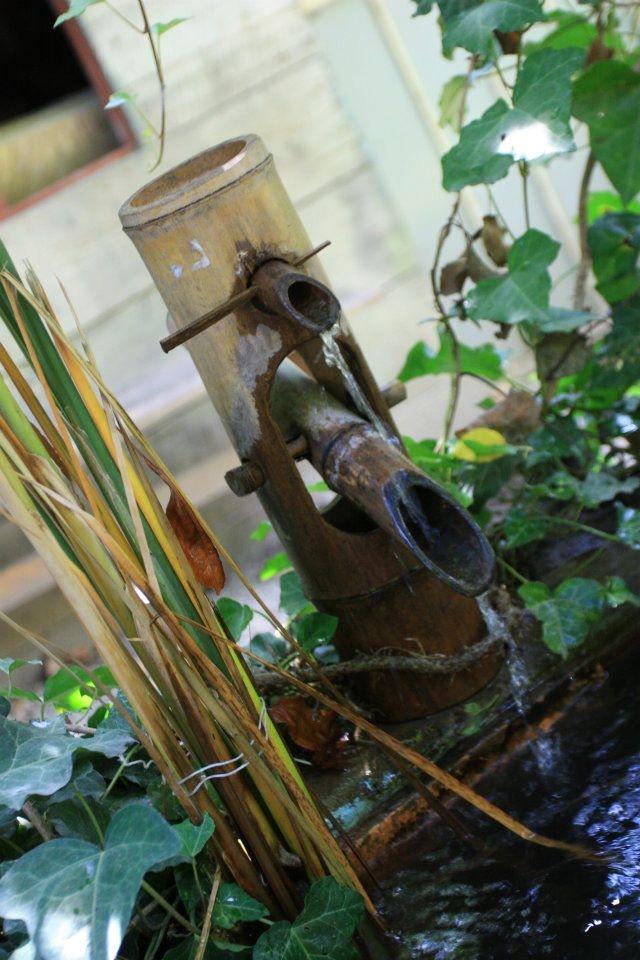 La Fontaine En Bambou Fontaine Bassin Pinterest