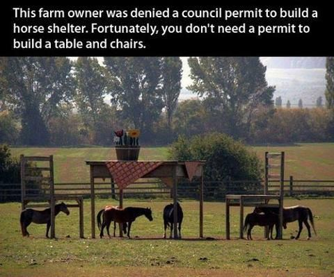 Like a boss. The farmer was denied a permit to build a