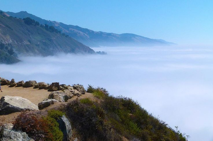 Risk comes from not knowing where you're going. Like driving in misty #california... who's up for a road trip this summer?