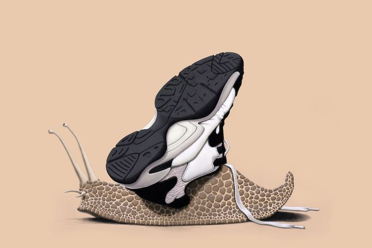 The Sneaker (colour) art | decor | wall art | inspiration | animals | home decor | idea | humor | gifts