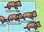 La cagna ha partorito tanti cuccioli ed essendo stremata, non ha la forza di accudirli. Aiutala tu e fai attenzione perchè ogni livello sarà sempre più difficoltoso!