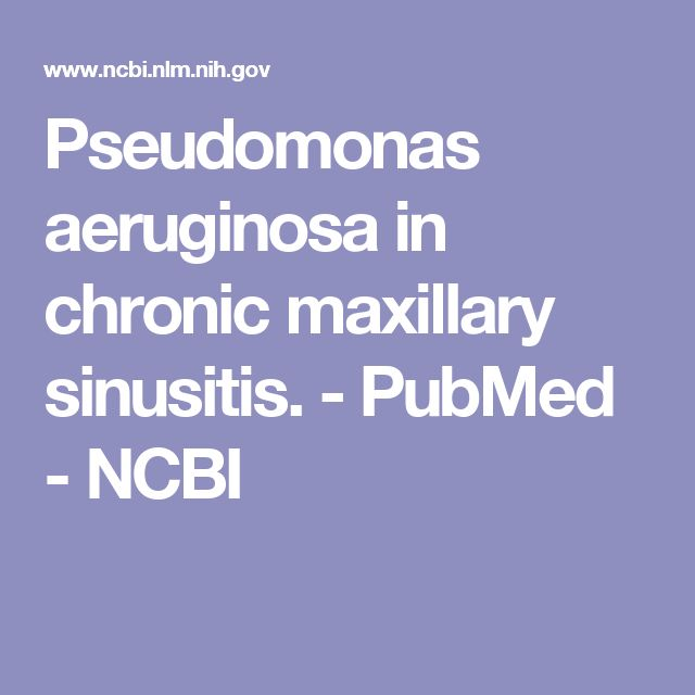 Pseudomonas aeruginosa in chronic maxillary sinusitis. - PubMed - NCBI