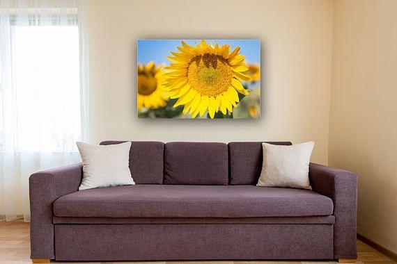 Sunflower Photography Sunflower Decor And Art Sunflower