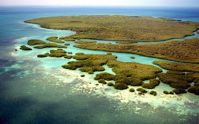 Caribean Islands