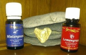 The combination of Lemongrass & Wintergreen Essential Oils is amazing for connective tissue injuries. I used it to assist in healing from acute tendonitis in my right arm, and several people that I know were able to avoid surgery for their torn rotator cuff injuries. I made up a mixture of 15 drops of each and combined it with YL Ortho Sport Massage oil and applied it several times a day. It was great for relieving the pain as well!
