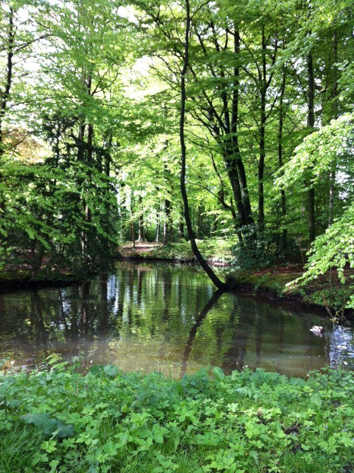Park Schothorst in Amersfoort