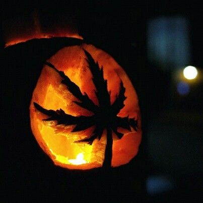 That is one detailed pot leaf!