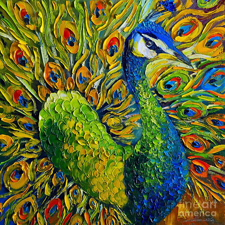 Peacock acrylic paintings - photo#29