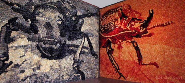 52 Bienal de Venecia (2007)  Pabellón Latinoamericano, Palazzo Zenobio Venecia, Italia. Mónica Bengoa.