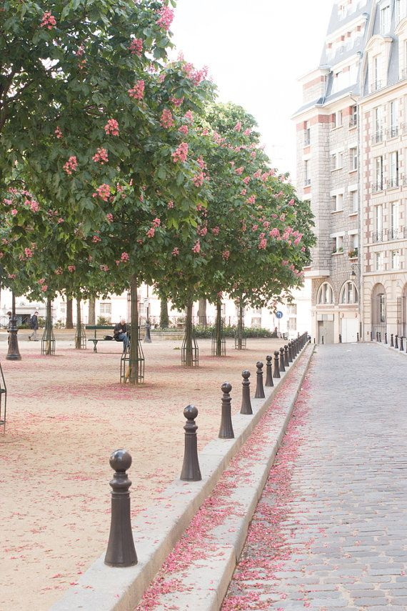 Paris Photography, Spring in Place Dauphine, Quiet corners of Paris, french decor, Paris street photography, Dining Room Decor, Paris Art