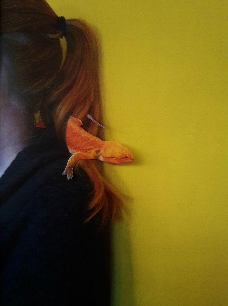 Bearded dragon (Baardagaam), photo collage by Jessica van der Burg #animal #abc