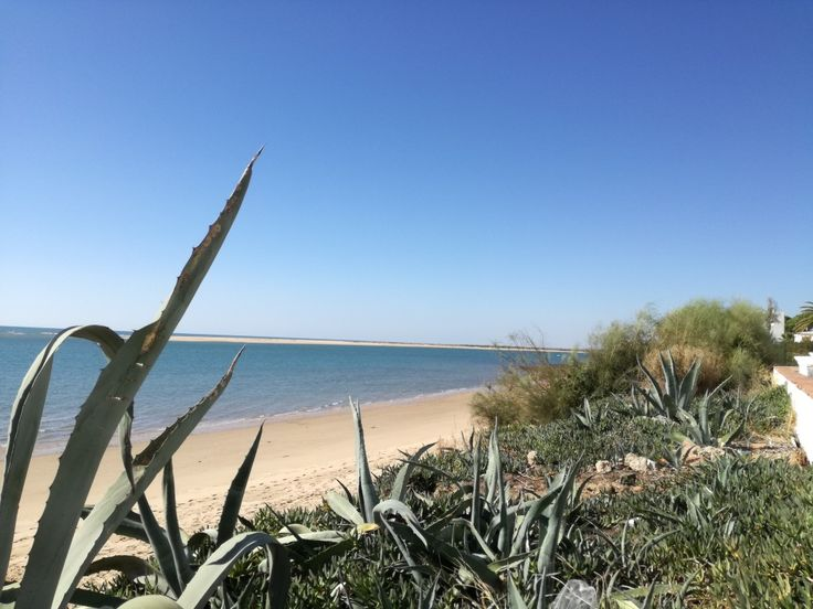 Octubre en el Portil.Huelva.Andalucia
