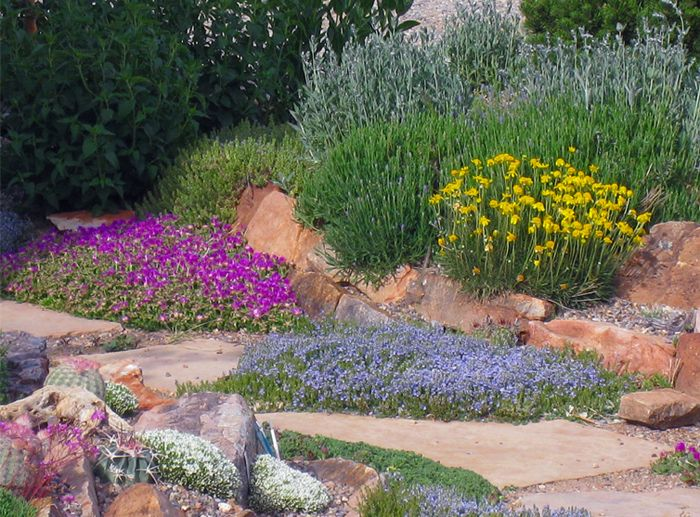 Lovely Xeric Plants Edge A Flagstone Pathway Edged With Rocks. Rocks Look  Amazing And Natural