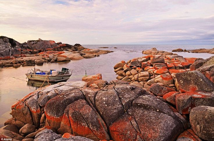 The Bay of Fires, in the Bay of Fires Conservation Area on the northeastern coast of Tasma...