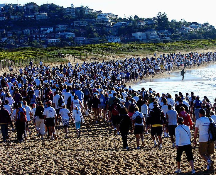 Register for the Pub 2 Pub Charity Fun Run and Walk on Sydney's Northern Beaches and help raise money for a great cause.