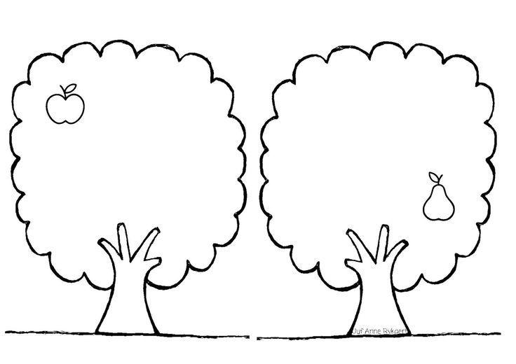 mettre les fruits dans l'arbre qui correspond