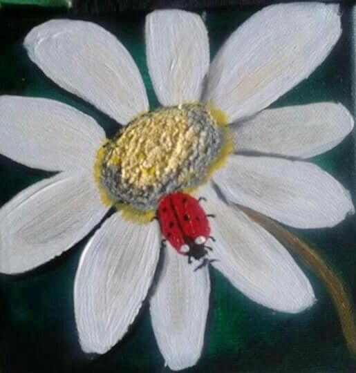 Ladybird series 6