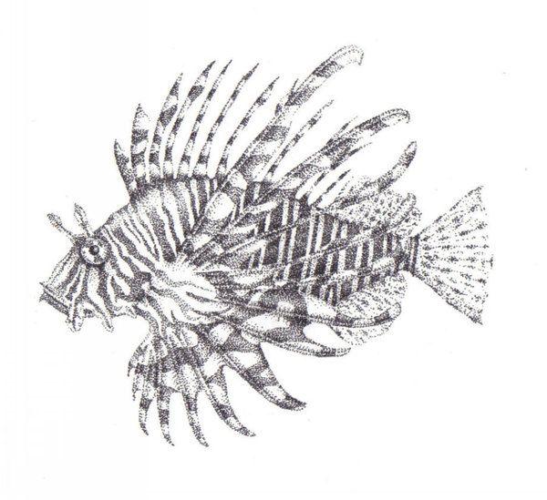 Stippled Lion Fish by Lawlfox.deviantart.com on @DeviantArt